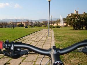 Пальма на велосипеде-Морской парк